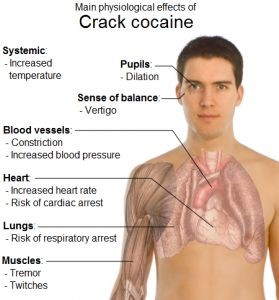 image showing the phisiological effects of crack cocaine