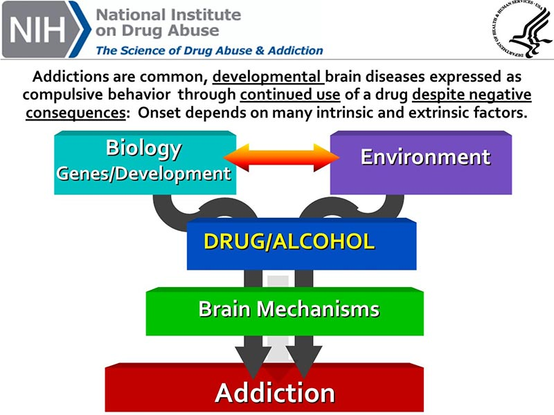 the science of drug abuse graph
