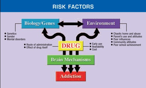 risk factors for addiction graph