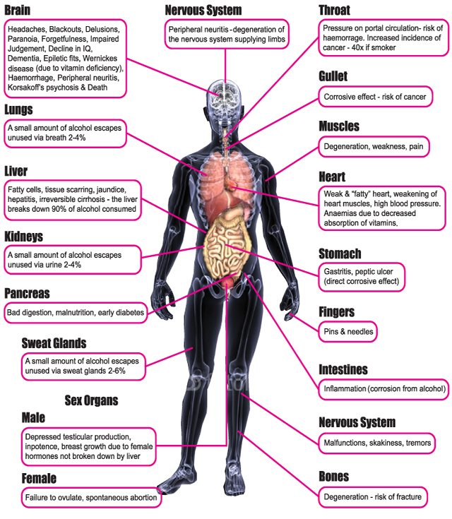 drinking alcohol-effects