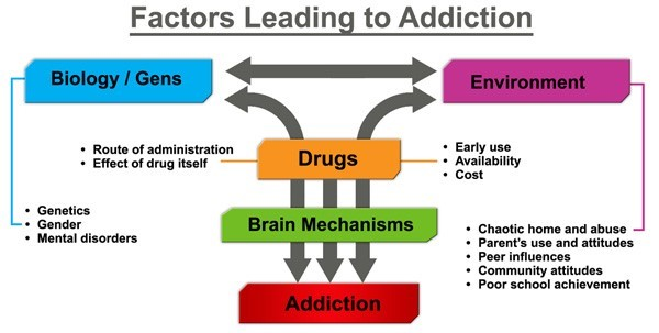 factors leading to addiction