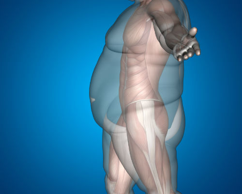 photo of a male body type fit v obese